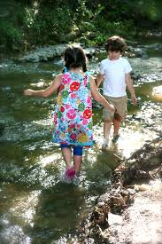 Tennessee nature activities images What to do with your kids this summer in nashville suburban turmoil jpg