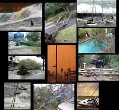 windy melbourne weather u2013 backyard a mess rentoid