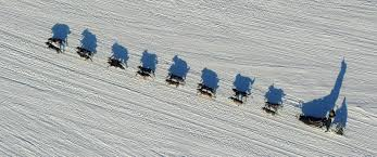 Iditarod Map 5 Surprising Facts About The Iditarod Dog Sled Race
