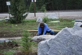 planting natives loonlake99148 loon lake land conservancy
