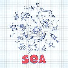 doodle sea ocean life elements sketch fishes sea shells and
