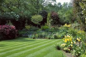 Lawn Landscape by How To Start New Lawns From Seed Preparation Care