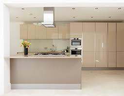 kitchen cabinet furniture interior stunning kitchen cabinet with wooden cabinet furniture