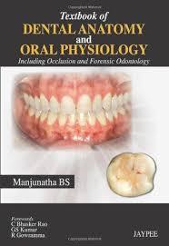 Wheeler S Dental Anatomy Physiology And Occlusion Dental Anatomy First Edition Abebooks