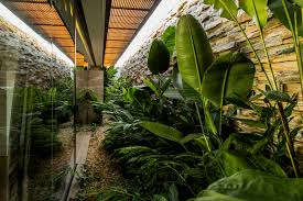 Interior Garden House Contemporary House With A Folding Wood Facade And Interior Garden