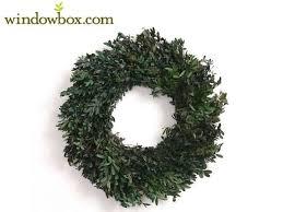 preserved boxwood wreath preserved boxwood wreath 18 decorations garden
