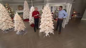 bethlehem lights flocked tree with instant power on qvc