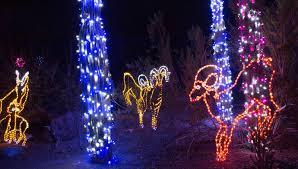 Phoenix Zoo Lights by Kastle U0027s Journey Mesa Good Life Rv Resort