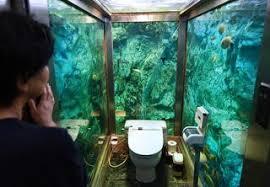 Coolest Bathrooms Coolest Bathrooms 4 Mumin Papa Cafe U2014 Visionstate Inc