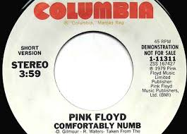 Lyrics For Comfortably Numb Finding A Long Version Of Pink Floyd U0027s Comfortably Numb