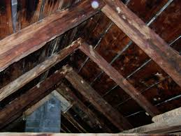 A Frame Style Homes by Can You Help Save This Old Timber Frame House From Being