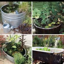131 best water gardens images on pinterest garden ideas