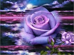 purple roses diamond embroidery 5d diy diamond painting purple flower