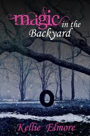 The Backyard by Magic In The Backyard Winter Goose Publishing
