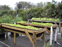 Raised Vegetable Garden Ideas Elevated Vegetable Garden Webzine Co