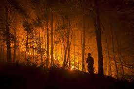 Card Wildfire Alaska by Tinder Dry An Early Start To Wildfire Season In The West The