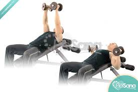 Incline Dumbell Bench Press Palms In Incline Dumbbell Bench Press
