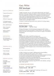 php programmer resume u2013 resume examples