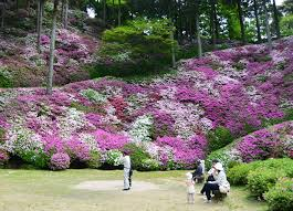 famous garden of flower images garden and landscape ideas