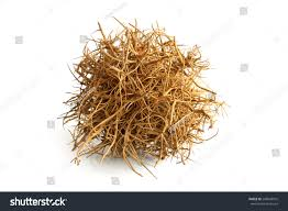 tumbleweed tumbleweed on white background stock photo 208548916 shutterstock