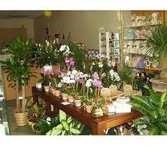 fremont flowers fremont florists flowers in fremont ca the flower shop