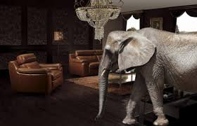 elephant in the living room the elephant in the alternative investment living room jagen llc