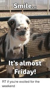 Almost Friday Meme - its almost friday meme almost best of the funny meme