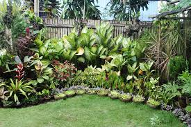 garden design ideas in the philippines google search tropical