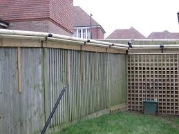 cat proof fence temporary sorting board pinterest cat dog