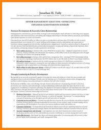 executive summary for resume examples 10 resume executive summaries writing a memo