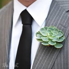 Succulent Boutonniere Succulent Boutonnieres Also Like The Grey Suit With Black Tie