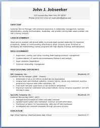 Professional Summary Resume Sample by Professional Resume Template Haadyaooverbayresort Com