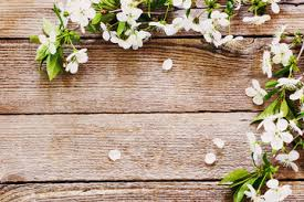 wood flowers search photos category graphic resources textures wood