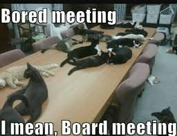 Board Meeting Meme - cat vs food on twitter