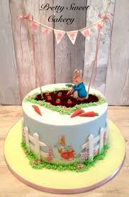 best 25 peter rabbit cake ideas on pinterest beatrix potter