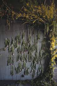 Flowers In Detroit - 28 flowers in detroit lisa waud infills abandoned detroit