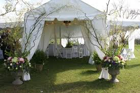 wedding backdrop outdoor outdoor wedding tent ideas williams