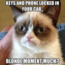 Blonde Moment Meme - keys and phone locked in your car blonde moment much grumpy cat