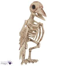 scary skeleton bird 30 cm tall crow halloween party decoration