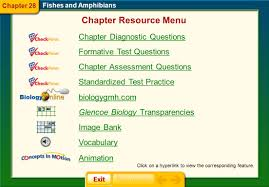 chapter 28 fishes and amphibians ppt video online download