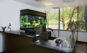 Fish Tank Reception Desk Aquarium Design Google Search Desing Akvarium Pinterest