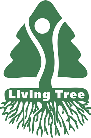 How Much Are Real Christmas Trees - bring the forest home with you with the living christmas tree