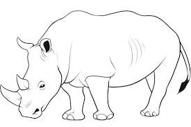 rhino clipart coloring page pencil and in color rhino clipart