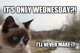 Wednesday Funny Meme - it s only wednesday meme google search quotes and shit