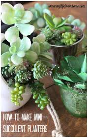 succulent arrangements how to make mini succulent arrangements my from home