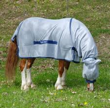 Buccas Rugs Bucas Buzz Off Full Neck Pony Fly Rug All The Best Rugs