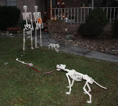 Halloween Skeleton Dog Decoration by 214 Best Halloween Skeletons Images On Pinterest Halloween Ideas