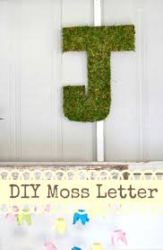 How To Make A Moss Wall by Best 20 Moss Letters Ideas On Pinterest Ingredients Of Beer