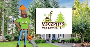 tree service tree service