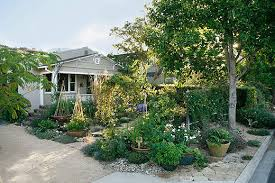 Urban Backyard Garden  Permaculture Adventure Share - Backyard permaculture design